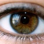 العين-650x330